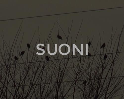 Suoni